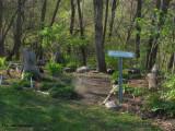 Woodland walk-entrance