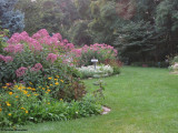Backyard Garden just after sunrise