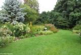 Backyard garden, August 2010