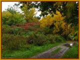 Along the Green Heron Way