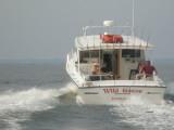 Striper Fishing 2008