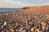 Harborville Beach DSC_5273-1.jpg