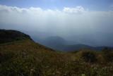 Jungle hilltop 2200 mtr.