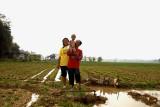 Farmers, dry season peanuts, wet season rice