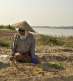 Garden on the bank of river mekong