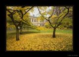 Lund Sweden Autumn Photos