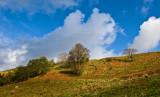 Straiton village at Ayrshire Scotland: The Monument and Bennan Circuit -     Oct 08.