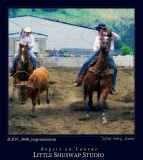 Canvas_Ropers_3840-2006.jpg