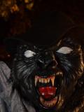 Halloween Display 2010 Harrietsville Ontario