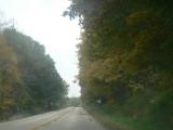 Winding road , misty morning