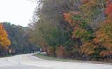 Fall colors at crossroads