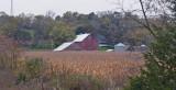 Red barn in harvest corn