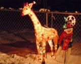 Jeffrey the Christmas giraffe