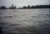 Surfing through the flooded Bennington greenbelt