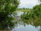 Runnells Access Under Water-Flood of 2001