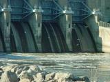 Gulls at Red Rock dam