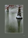 Nieve en el parque del Retiro - Snow at El Retiro park