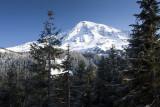 Overlook View Of Mt. Rainier