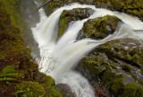 Above Sol Duc Falls