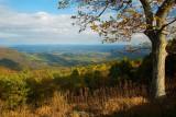 Saddle Overlook- Blue Ridge Parkway
