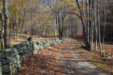 Fall Path: Cascades In Giles County