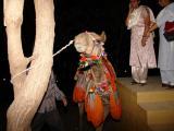 Choki Dandi - Camel ride