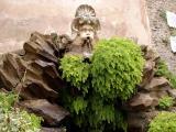 A fountain at Frascati