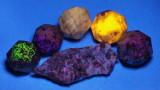 FL_Mineral_1170028ck1.jpg