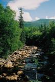 Portraits and Landscapes: Newfoundland trip July  2007