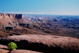 Portraits and Landscapes: Utah  2008