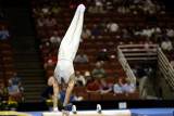 220046ca_gymnastics.jpg