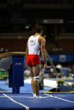 220052ca_gymnastics.jpg