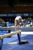 330010ca_gymnastics.jpg