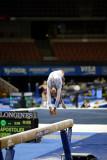 330011ca_gymnastics.jpg