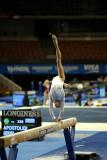 330012ca_gymnastics.jpg