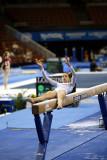 330025ca_gymnastics.jpg
