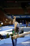 330036ca_gymnastics.jpg
