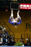 150005va_gymnastics.jpg