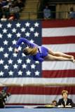 150078va_gymnastics.jpg