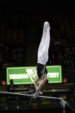 150093va_gymnastics.jpg
