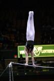 150095va_gymnastics.jpg