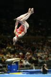 170028ny_gymnastics.jpg
