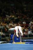 170039ny_gymnastics.jpg