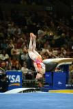 170042ny_gymnastics.jpg