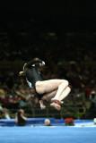 170076ny_gymnastics.jpg