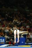 170082ny_gymnastics.jpg