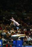 170084ny_gymnastics.jpg