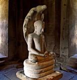 Image of the Buddha under a naga, close up