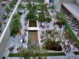 Garden of the Museum of Modern Art