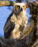 Painted Great Horned Owl chick